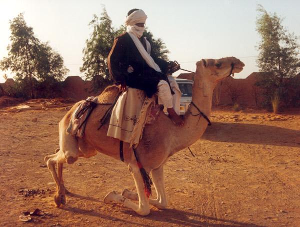 zegri_kamel